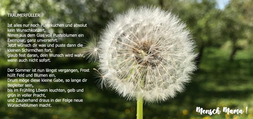 Die pusteblume gedicht